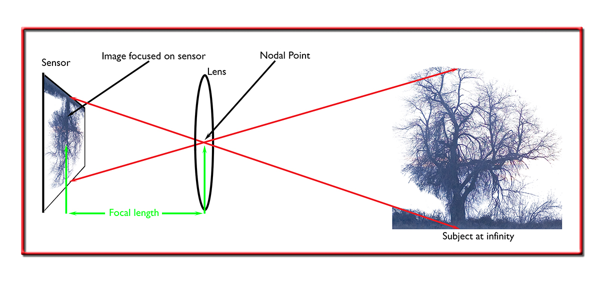 Image sensor, nodal point and the tree focused at infinity.