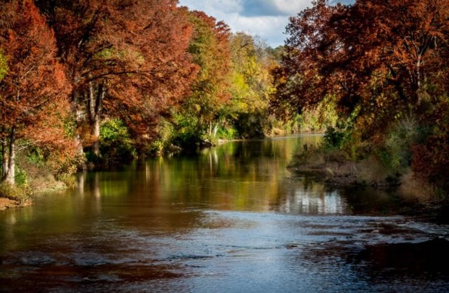 Guadalupe Serenity by Mary Hulett