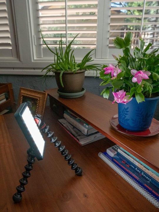LED lighting a flower