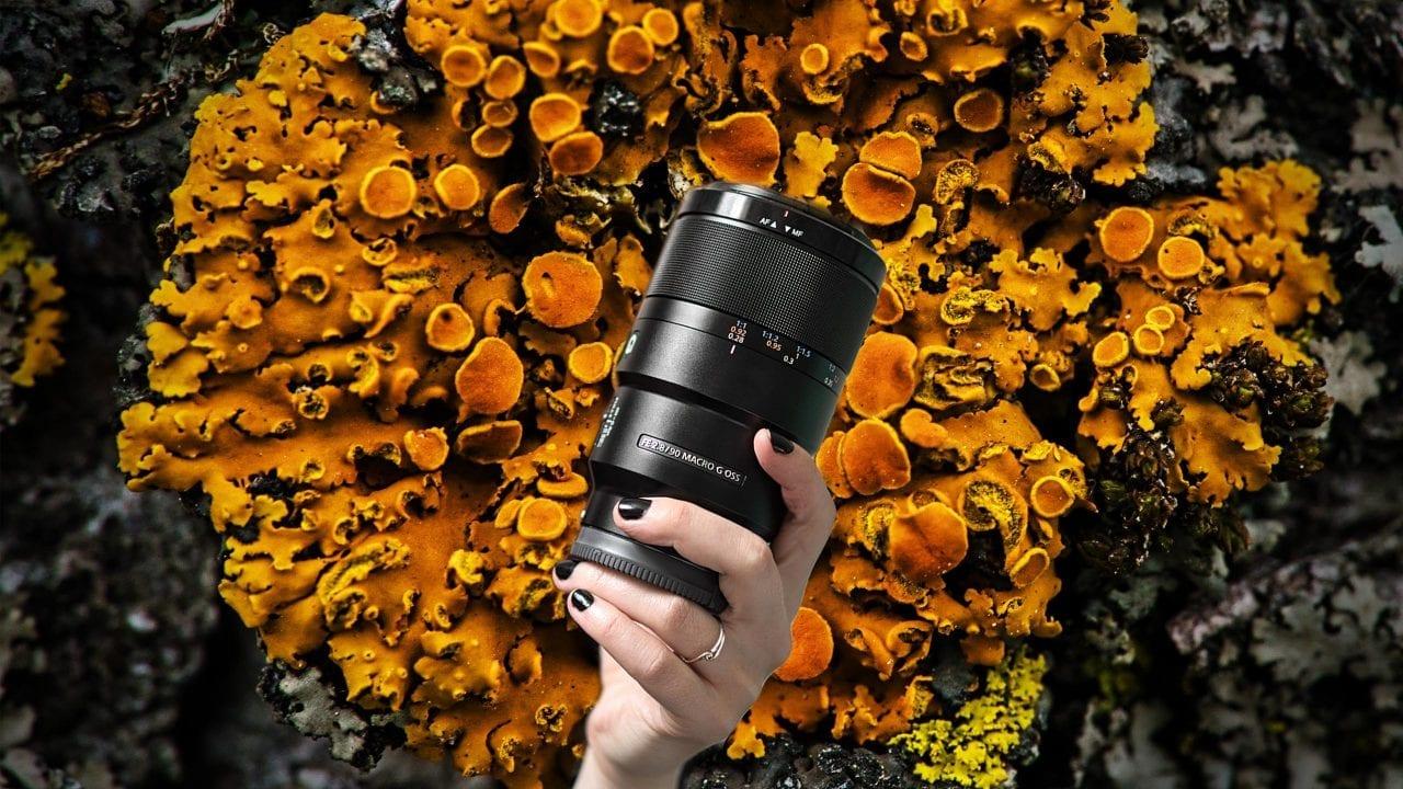Sony 90mm macro f/2.8
