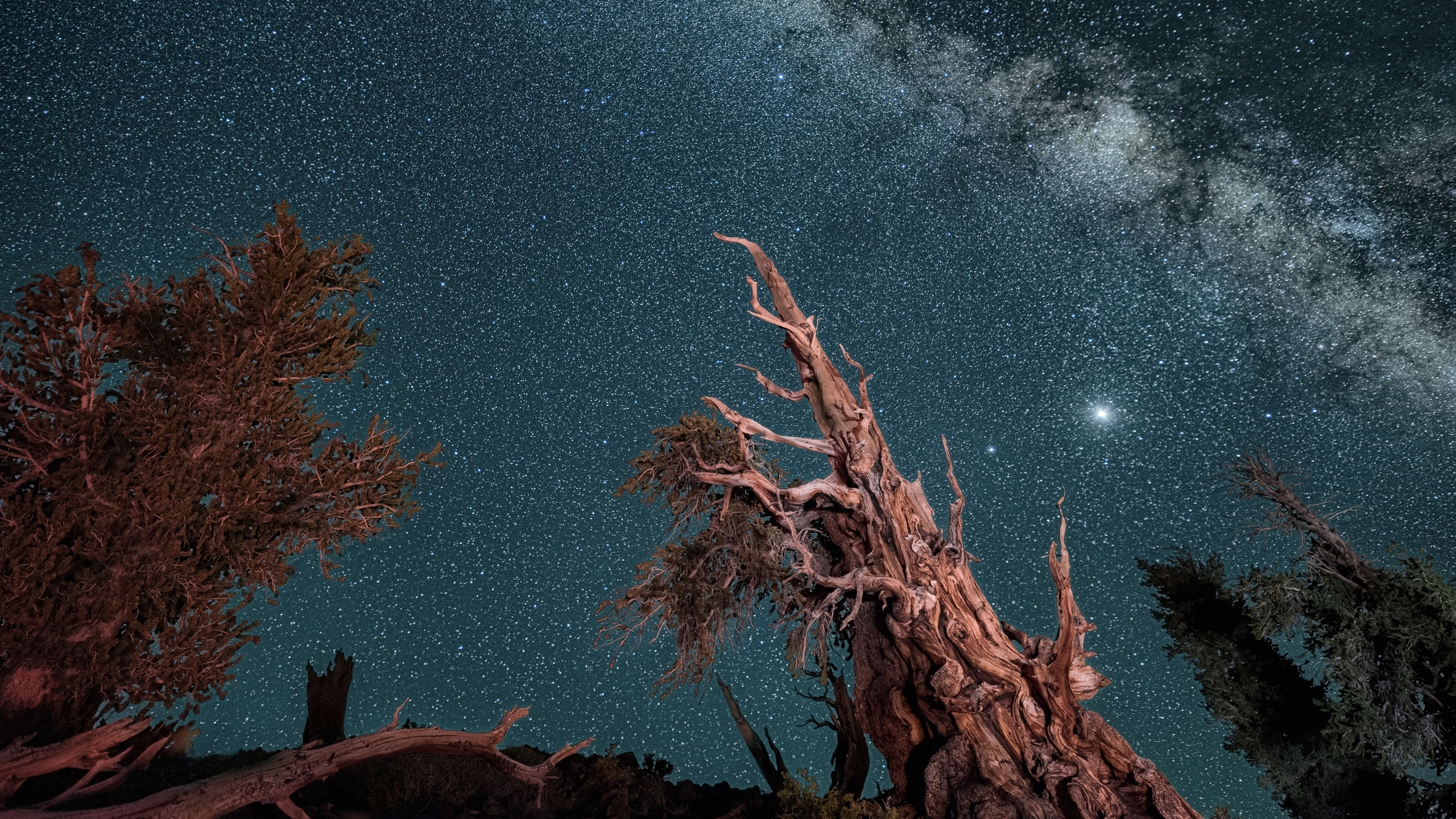 Made from 40 light frames by Starry Landscape Stacker 1.8.0.  Algorithm: Mean Min Hor Star Dupe