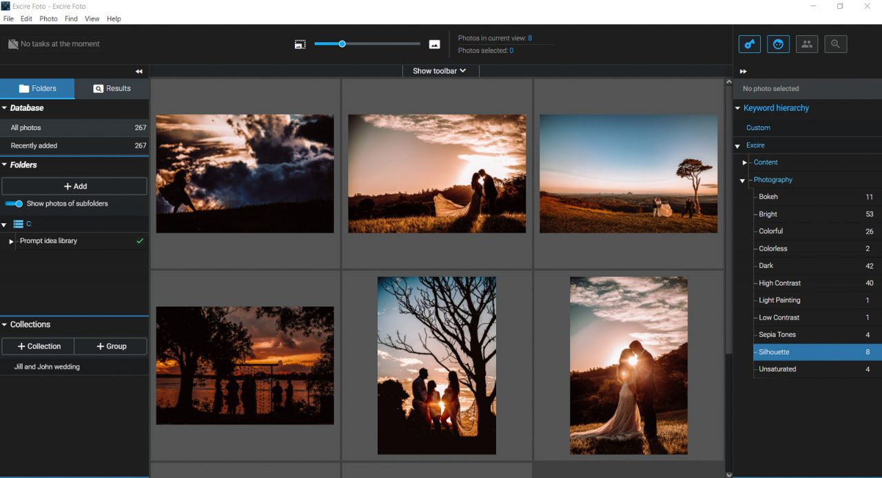 Screenshot of Excire Foto keyword silhouette