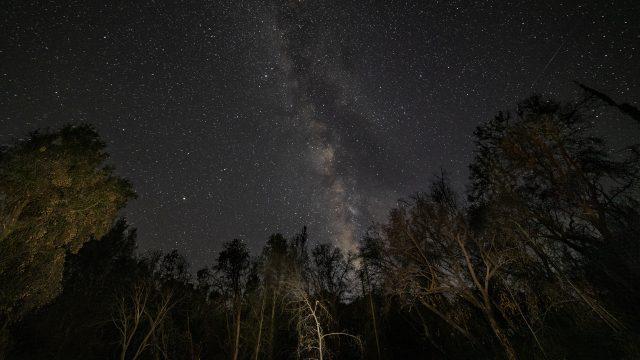 Milky Way from the Santa Cruz Mountains