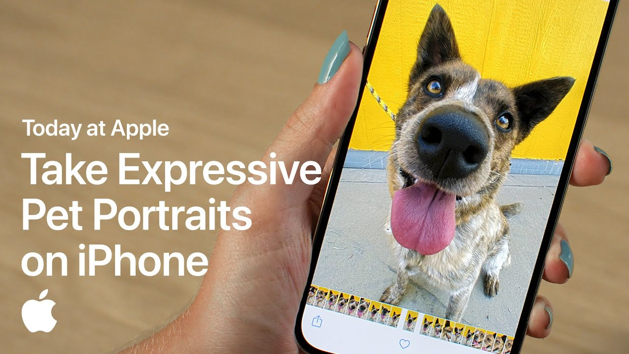 Take Expressive Pet Portraits on iPhone with Sophie Gamand   Apple - youtube